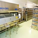 Sala de Produção de ratos - Colônia Wistar