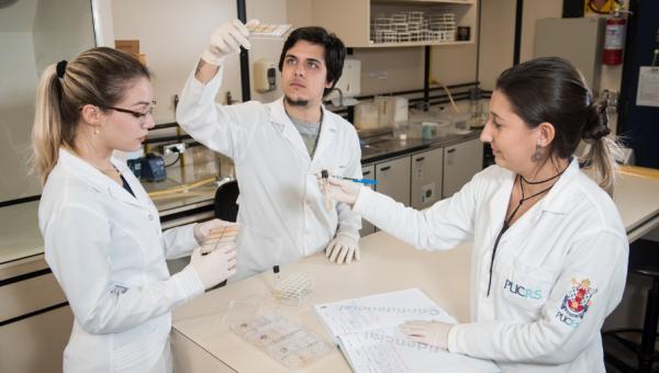 Iniciação Científica possibilita contato com a pesquisa durante a graduação
