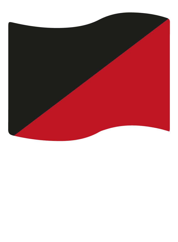 plano_covid-19-03-organizacao_do_trabalho-bandeira_preta_vermelha