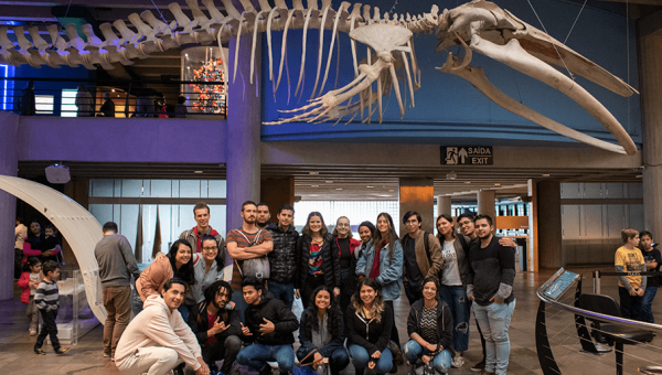 Academic mobility students at PUCRS learn more about language, culture and Campus