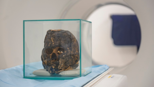 PUCRS research makes international impact by revealing mummy's intact cells