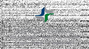 Logotipo_oficial_Emagis1