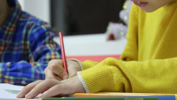 Nova especialização trabalha o tema do Português na Educação Básica