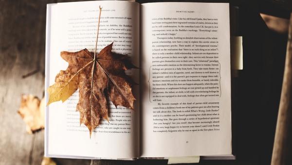 Abertas as inscrições para curso sobre autobiografia