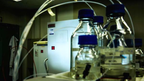 PUCRS vai disponibilizar ultrafreezers para armazenamento de vacinas contra a Covid-19