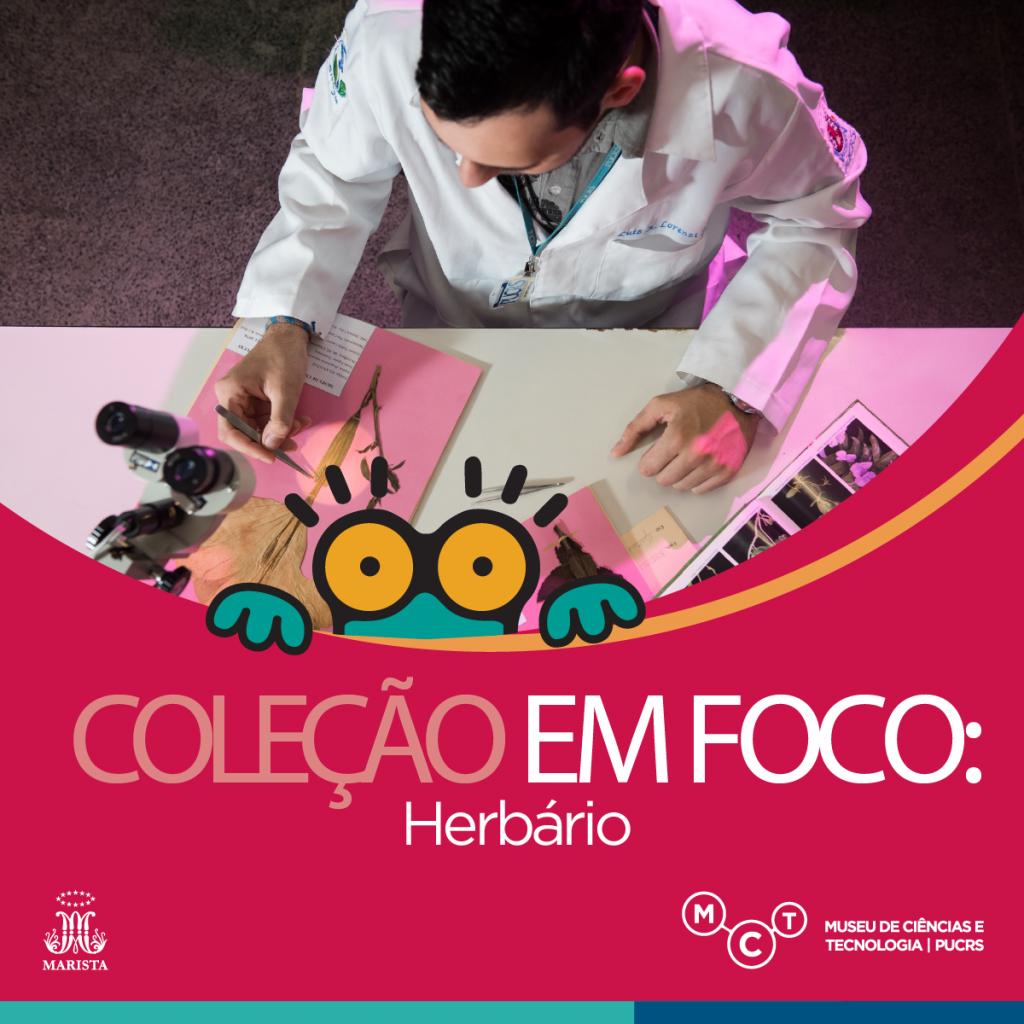 colecao-foco8