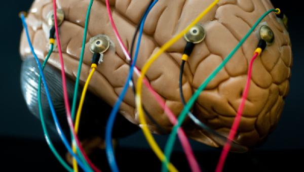 Tumor cerebral em estudo