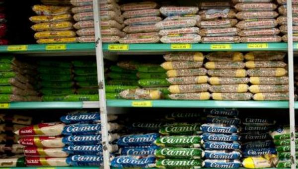 Campanha arrecada alimentos para refugiados e imigrantes