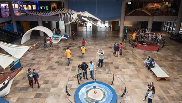 O Museu em 50 fatos e curiosidades