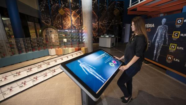 Como nascem as exposições do Museu?