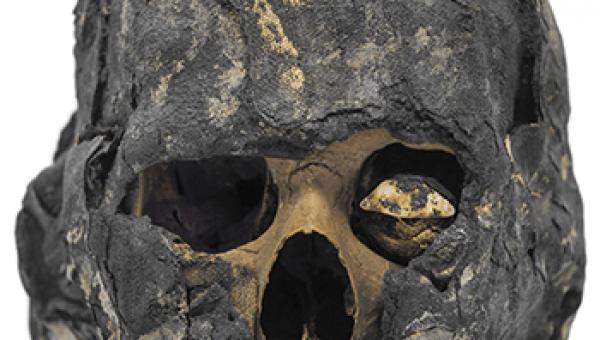Pesquisa confirma identidade de múmia egípcia