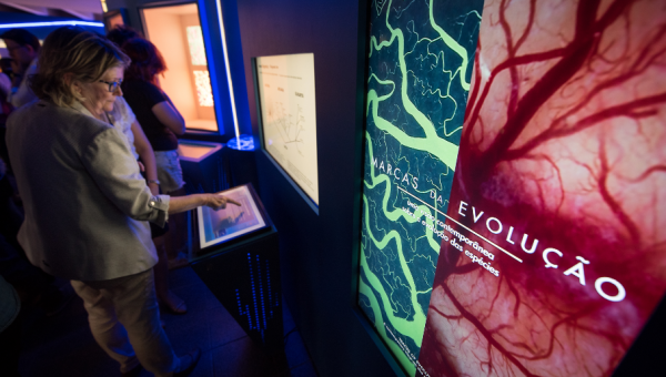 PUCRS' Science and Technology Museum launches exhibit Marcas da Evolução (Traits of Evolution)