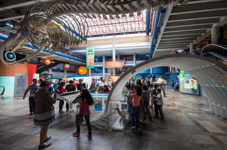 Museu de Ciências e Tecnologia, área de exposições, ossada de baleia