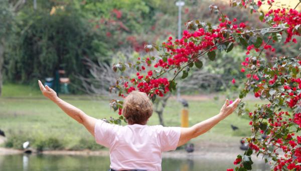 Extensão capacita profissionais para a ginástica gerontológica