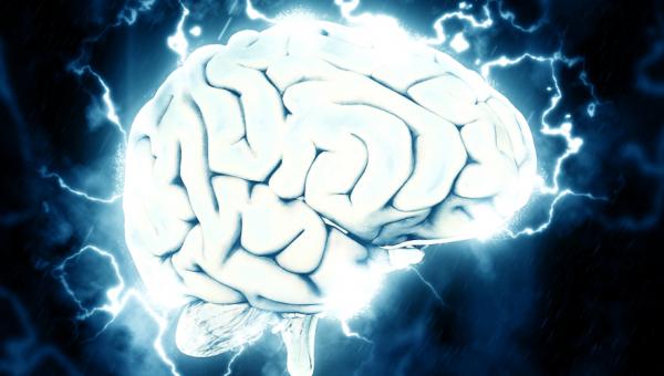 Professora da Universidade é referência na área de neuropsicologia