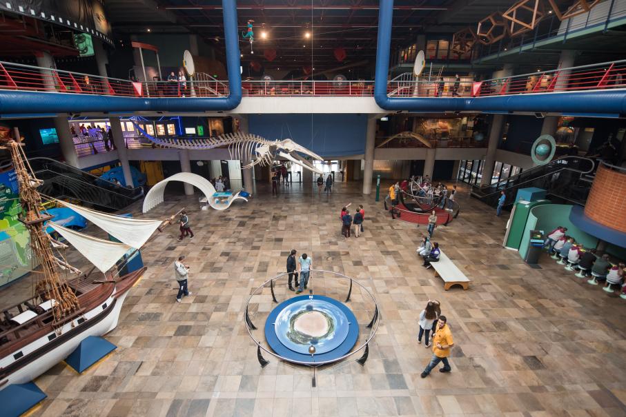 Museu,Exposição,Beagle,MCT