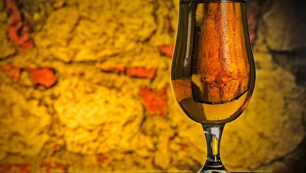 Cursos de Verão ensinam produção de bebidas