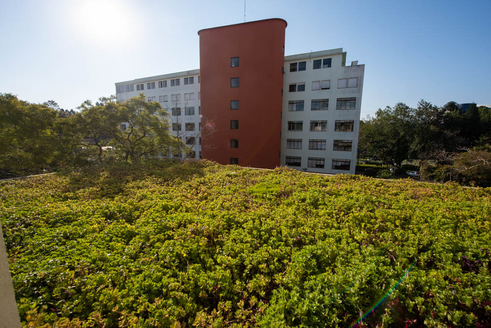 campus living labs, telhado verde