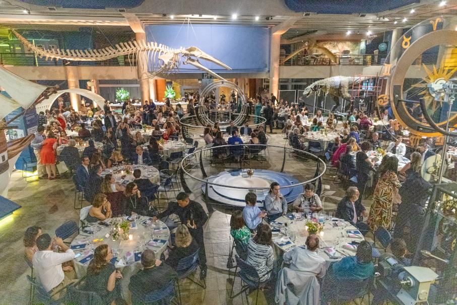 Jantar no Museu - Projeto Camaleão - Foto: Amora Imagem