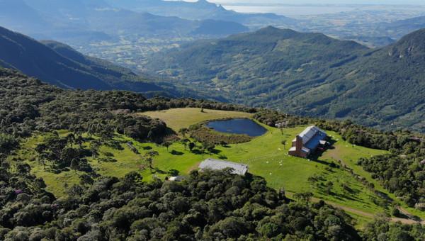 Instituto do Meio Ambiente lança o Guia de Flora do Pró-Mata