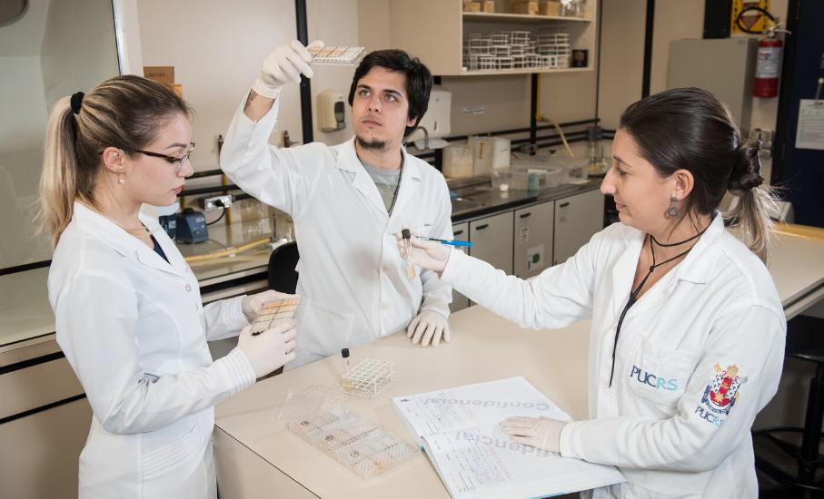 Iniciação Científica possibilita contato com a pesquisa durante a graduação - Alunos interessados podem integrar o programa ainda em 2020
