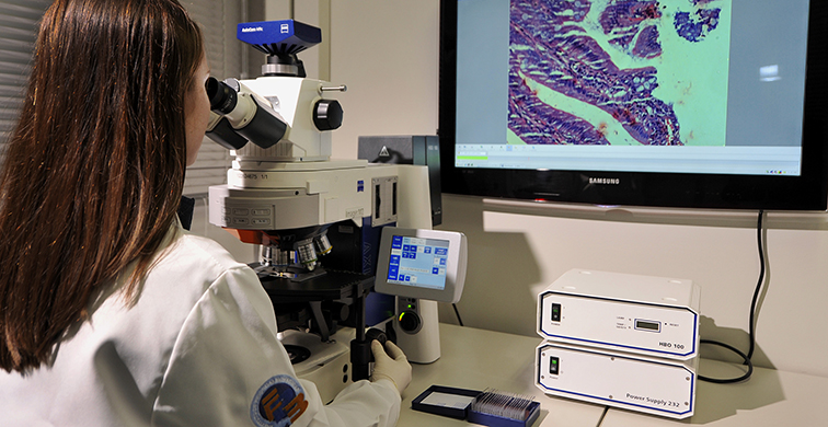 CPBMF, Centro de Pesquisa em Biologia Molecular e Funcional, INCT, INCT-TB, Tuberculose, Tecnopuc, Microscópio, Pesquisadora, Laboratório, Carrossel