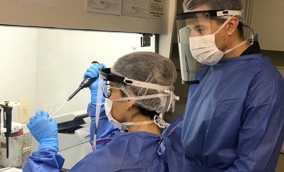 Pesquisadores da PUCRS desenvolvem novo teste para coronavírus - Alternativa de exame possibilita diminuir custos e ter resultados mais rápidos,pesquia