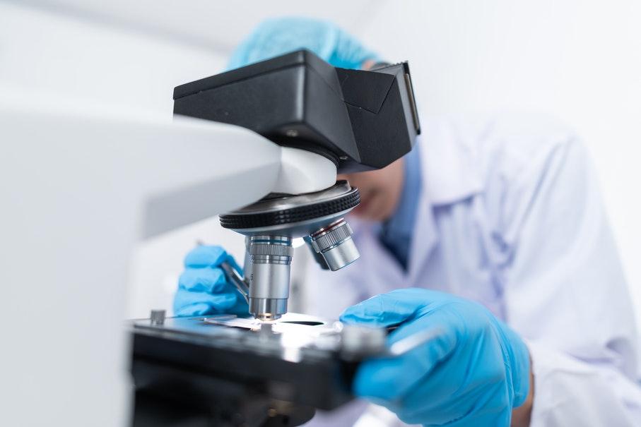 ciencia,pucrs excelência em pesquisa,pesquisa,dia da ciência e do pesquisador
