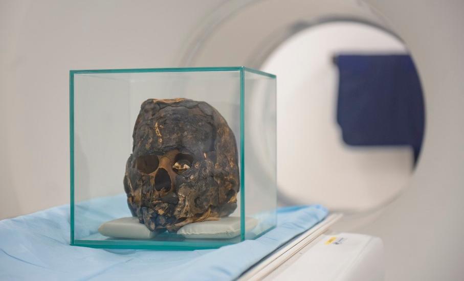 múmia,pesquisa
