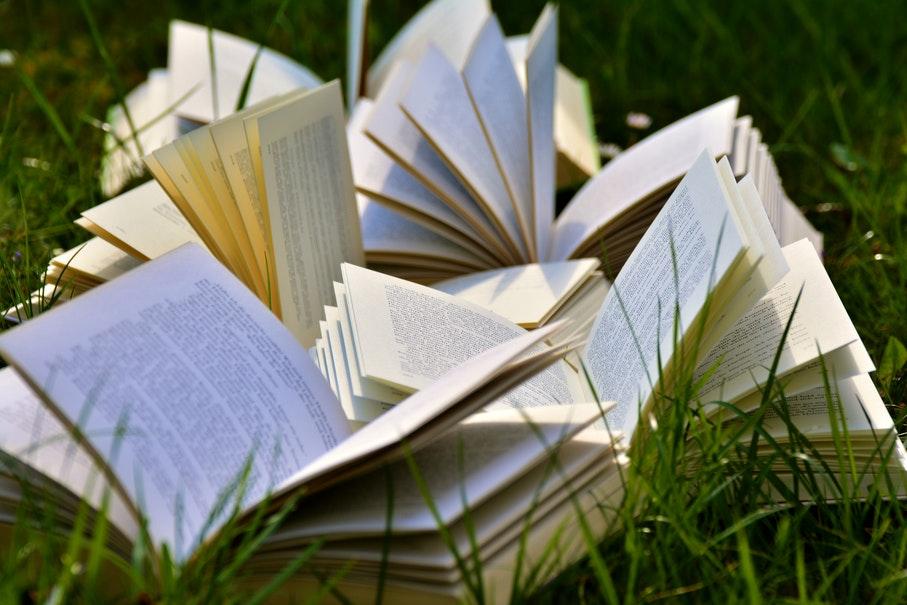 Livros da ediPUCRS são voltados à divulgação do conhecimento científico, mas que buscam esclarecer temas e problemas contemporâneos à comunidade