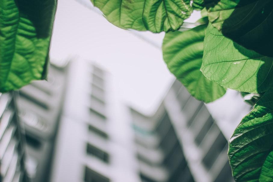 Na área de edificações sustentáveis, o uso racional dos recursos naturais tem sido considerado um diferencial