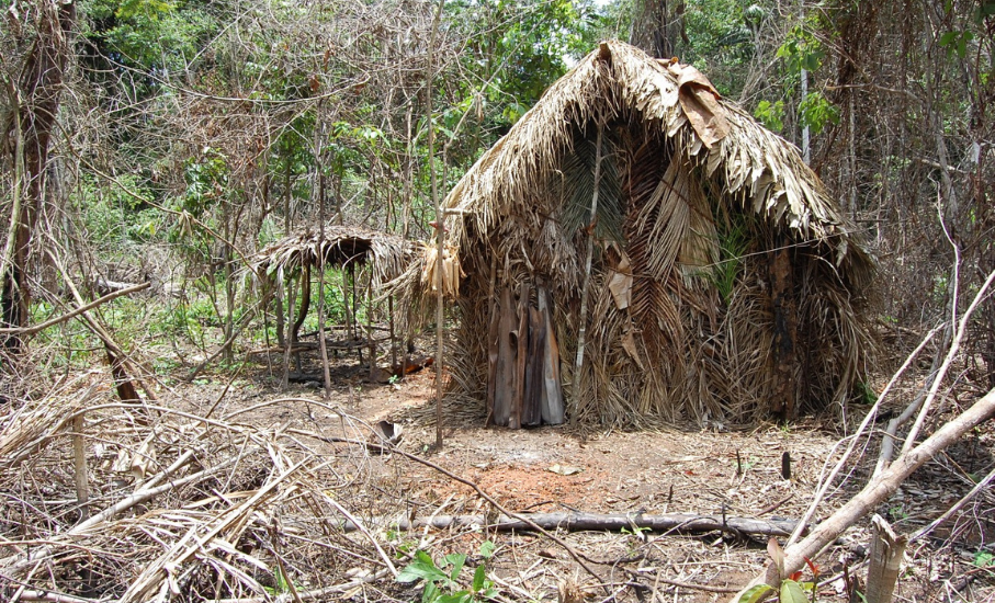 Estudo analisa impacto do contato com as civilizações na população indígena