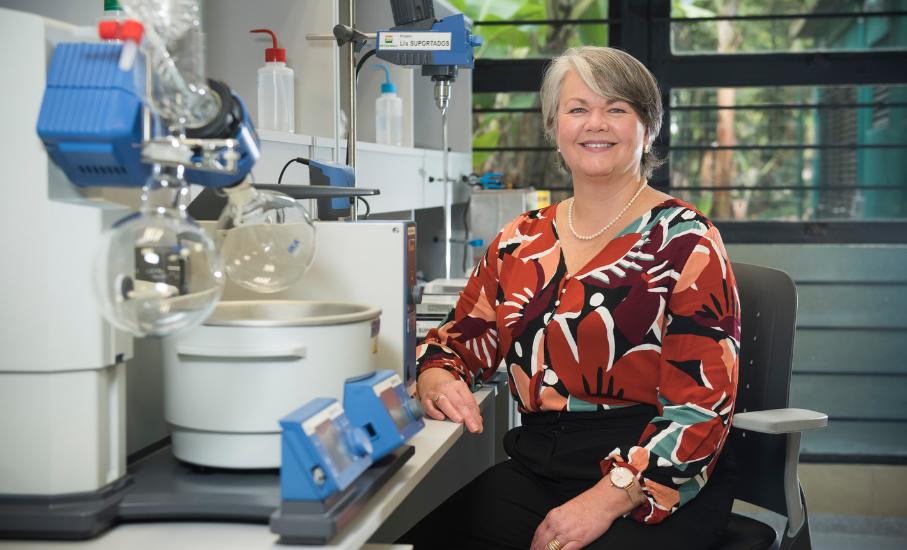 Estudo poderá auxiliar na redução de gás carbônico no meio ambiente - Trabalho sobre o CO2, conduzido pela professora e pesquisadora Sandra Einloft, busca combater o efeito estufa e as mudanças climáticas